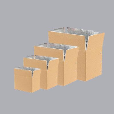 冷链保鲜纸箱